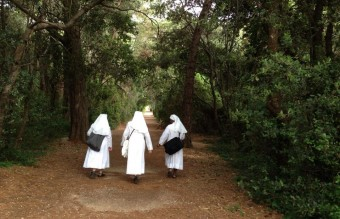 Nuns on an afternoon walk