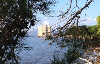 the Abbaye des Lerins Cistercian monastery on Saint Honorat island