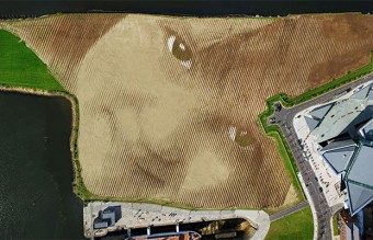 Wish-A-Gigantic-11-Acre-Portrait-by-Jorge-Rodriguez-Gerada-7