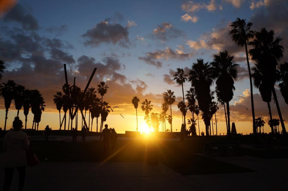 Venice plage LA (10)