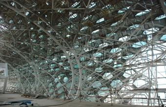 Shenzhen Airport 5