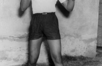 1950-boxer_2423737k