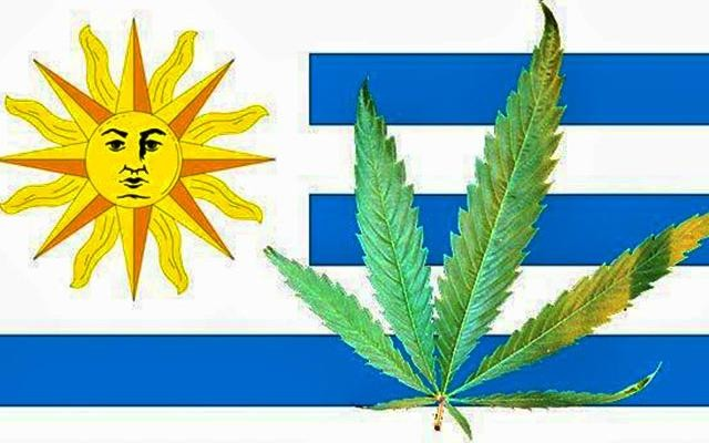 Uruguay-First-Country-to-Legalize-Marijuana_0