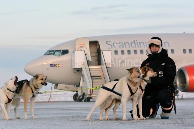 dog_sled_and_aircraft