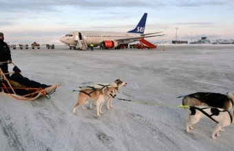 dog_sled_with_sas_aircraft_in_kirkenes