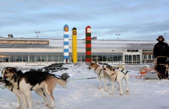 dog_sledg_and_border_poles
