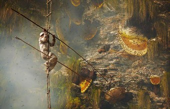 honey-hunters-andrew-newey-1