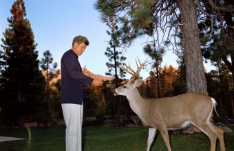 john-kennedy-photos-feeding-a-deer