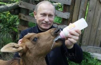 Poutine0101