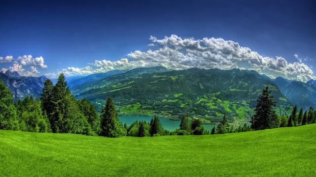 Green-Nature-wallpaper
