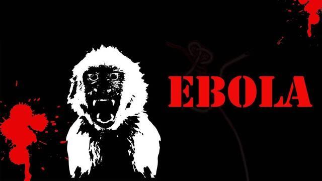 monkeys-ebola-1600x900-wallpaper-1629879
