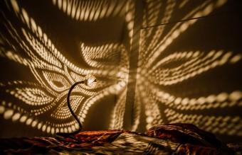 coconut-lamp-8
