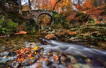 old-bridges-181__880