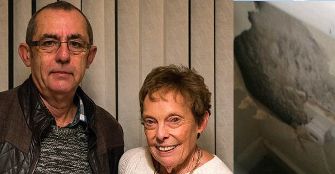 2347F9E900000578-2840131-Retired_van_driver_Tony_Jenkinson_left_and_his_wife_Jan_right_de-1_1416356202476