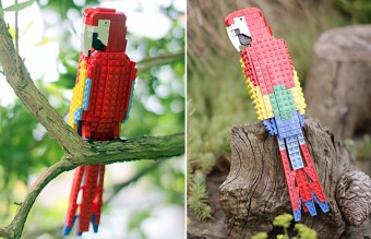 lego-birds-tom-poulsom-4__880