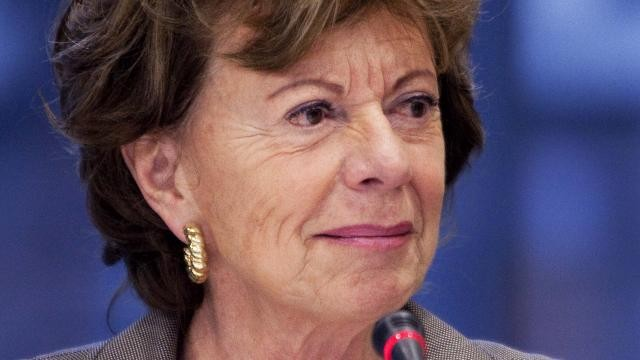 computers-adviseurs-neelie-kroes-gehackt