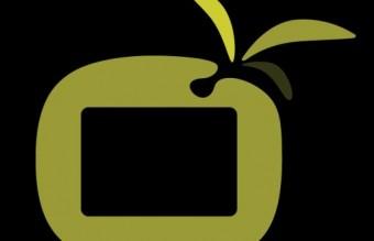 Olive-icon