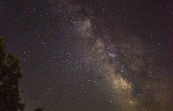 stardust2-Copy__880