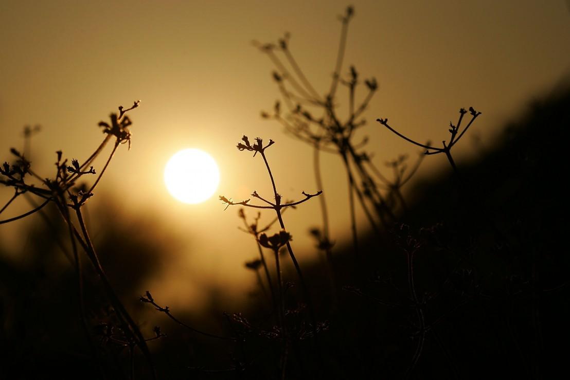 лято, слънце, жега