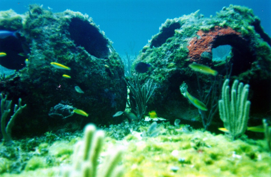 Cremated Remains Used To Help Create Artificial Reef