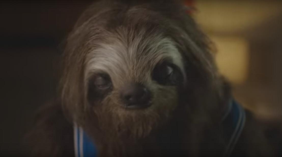 ленивец, реклама срещу марихуаната