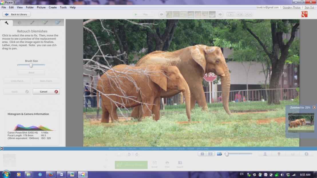 Picasa, слонове