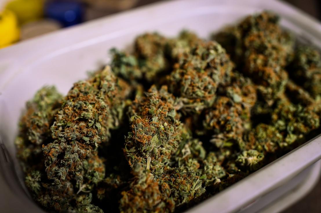 марихуана, канабис
