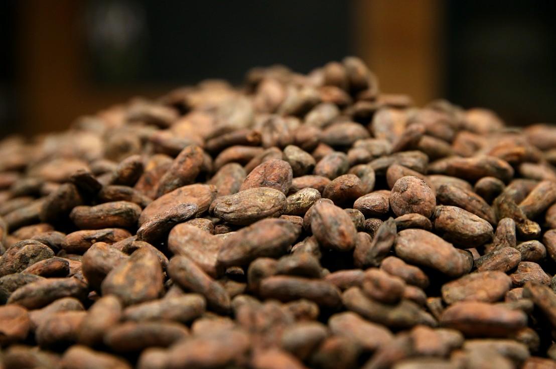 Какао, какаови зърна