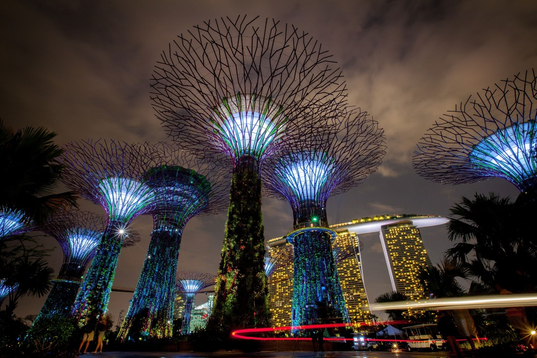 Gardens By The Bay - Supertrees Light Show Opens