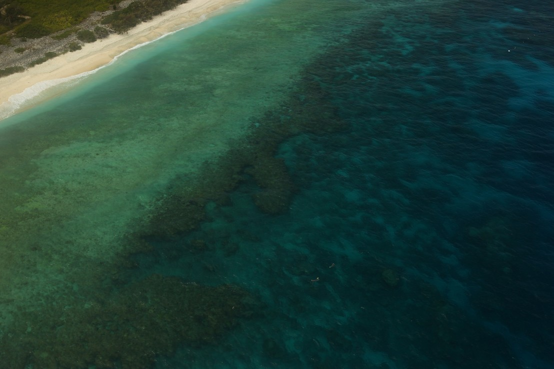 голям коралов риф, корали, море, бряг,