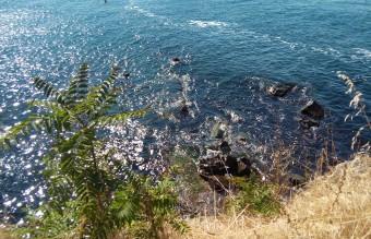 черно море, остров света анастасия,