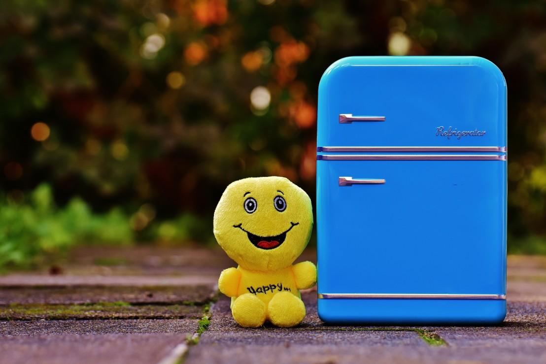 full-fridge-1729679_1920