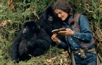 National Geographic_DianFossey_SecretsInTheMist (1)