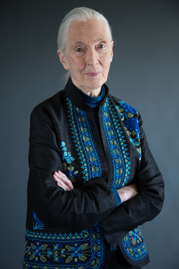 National Geographic_ Jane Goodall (1)