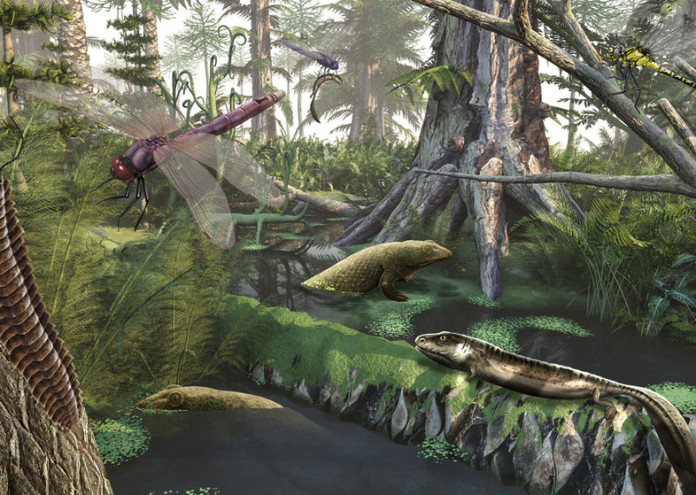 Giant Prehistoric Insects