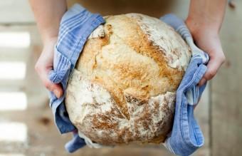 bread-food-fresh-263168