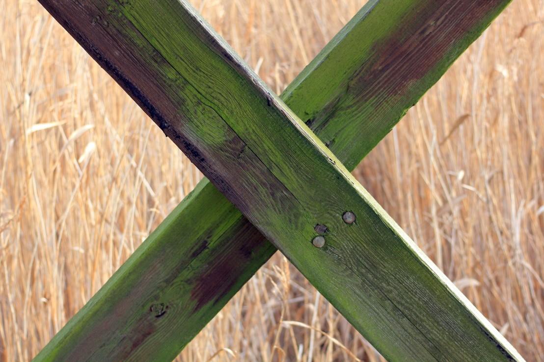 wood-515054_1920