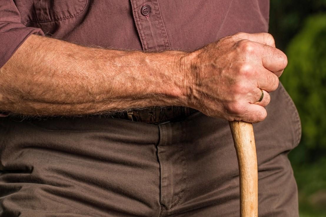 arm-cane-elder-40141