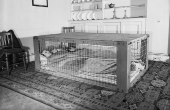 A_couple_sleeping_in_a_Morrison_shelter_during_the_Second_World_War._D2055