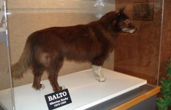Balto_CLE