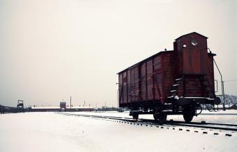 Freight_car,_Auschwitz_II-Birkenau,_2014