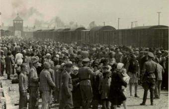 Selection_on_the_ramp_at_Auschwitz-Birkenau,_1944_(Auschwitz_Album)_1c