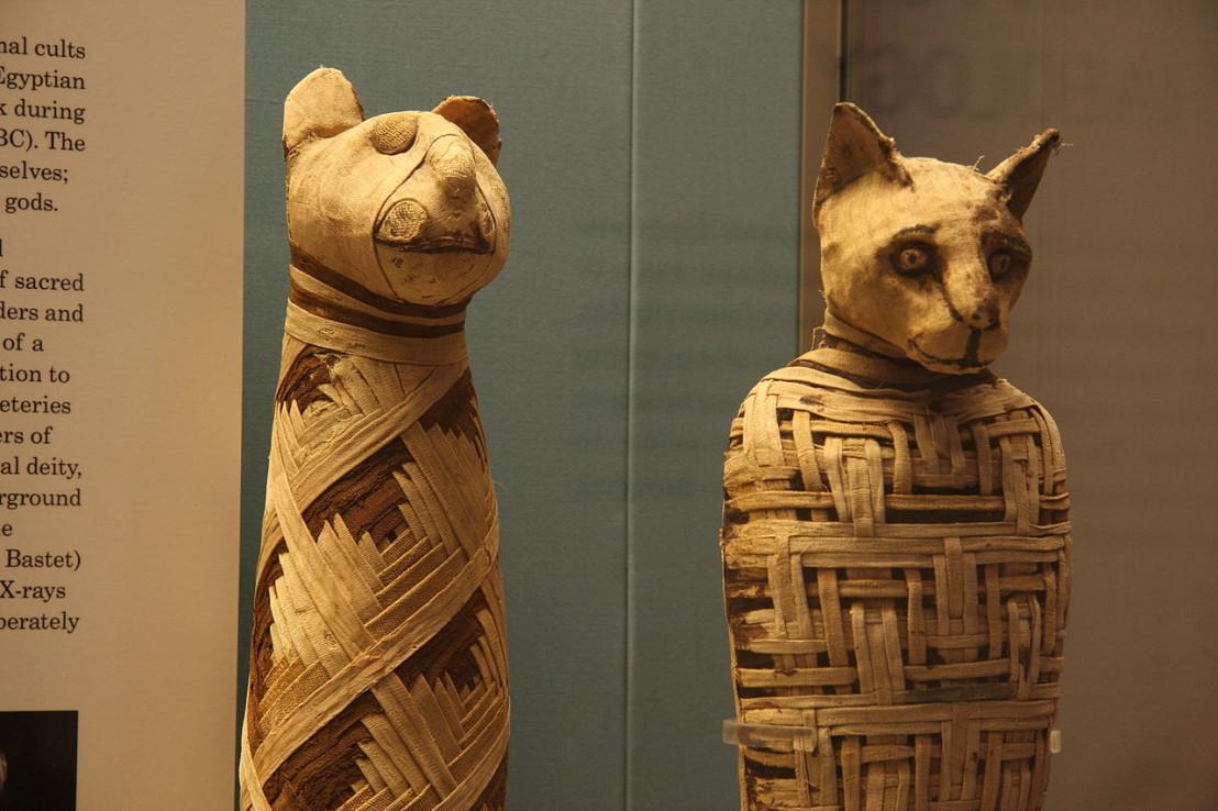 1280px-British_museum,_Egypt_mummies_of_animals_(4423733728)