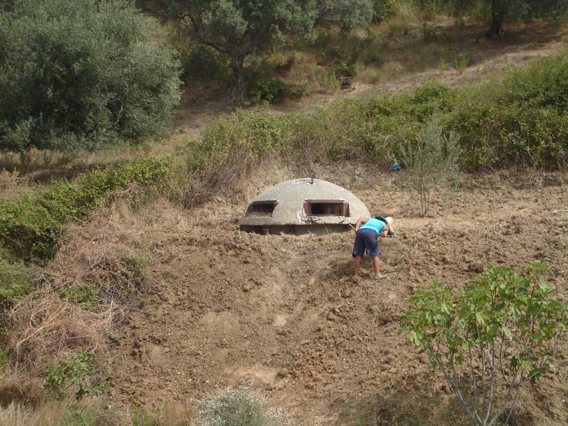Bunkerkopae