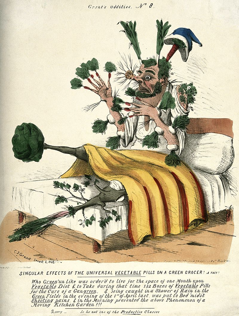 A_man_in_bed_with_vegetables_sprouting_from_all_parts_of_his_Wellcome_V0011125