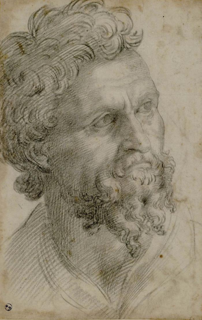 Portrait_of_a_bearded_man._Cellini,_Benvenuto