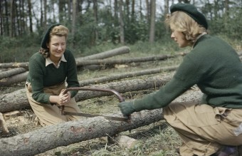 1280px-Land_Army_girls_sawing_larch_poles_for_use_as_pit_props_at_the_Women's_Timber_Corps_training_camp_at_Culford_in_Suffolk._TR912