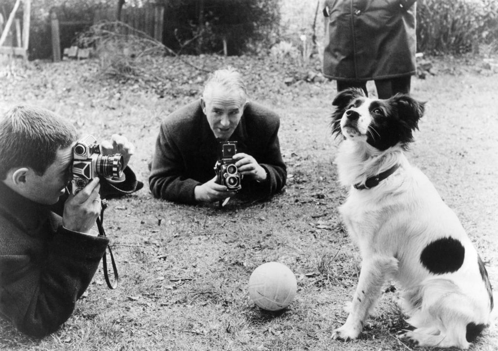 Soccer World Cup 1966: Dog Pickles finds the World Cup Trophy